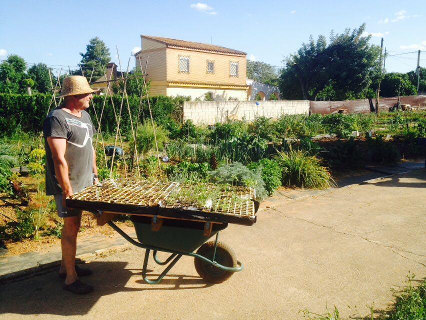 humana_3c_soluciones-agricultura-urbana_13-1